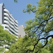 Edificio Ignea (1)